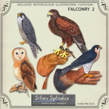 EXCLUSIVE Falconry 2 Watercolour by Silver Splashes