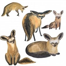 EXCLUSIVE Funny Foxy Watercolours by Silver Splashes