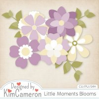 Little Moments Blooms by Kim Cameron