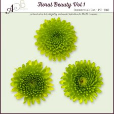 Floral Beauty Elements Vol. 01 by ADB Designs