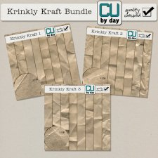 Krinkly Kraft Bundle
