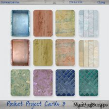 Pocket Project Cards 3 by Mandog Scraps