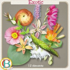 Exotic Flowers by Benthaicreations