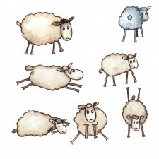 EXCLUSIVE Sheepish Watercolours by Silver Splashes