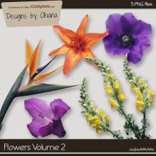 Flowers Vol 2 - EXCLUSIVE Designs by Ohana