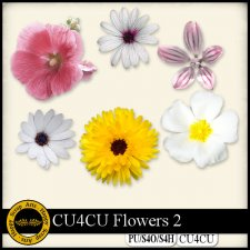 Flowers 2 elements CU4CU by Happy Scrap Art