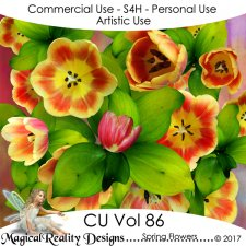 Spring Flowers - CU Vol 86 by MagicalReality Designs