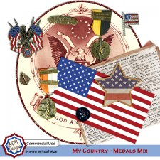 My Country BUNDLE - Brushes - Elements - Overlays - Frames - Ribbons
