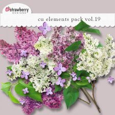 Flower Element Mix Vol 19 by Strawberry Designs