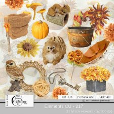 Elements CU - 217 by Cajoline-Scrap