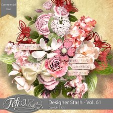 Designer Stash Vol 61 - CU by Feli Designs