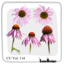 CU Vol 114 Flowers by Lemur Designs