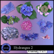 Hydrangea 2 CU4CU by Happy Scrap Arts