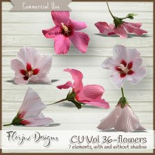 CU vol 36 Flowers by Florju Designs