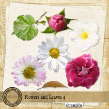 Flowers and Leaves 4 elements by Happy Scrap Art