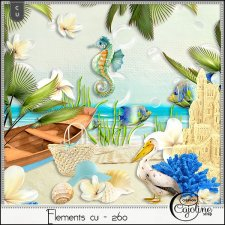 Elements CU - 260 at the beach by Cajoline-Scrap