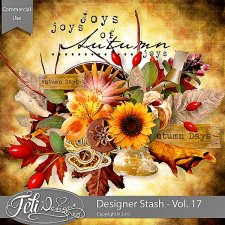 Designer Stash Vol. 17 - CU by Feli Designs