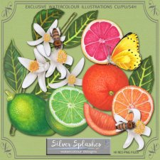 EXCLUSIVE Citrus set by Silver Splashes