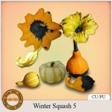 Exclusive Winter Squash 5 Elements by Happy Scrap Arts
