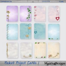 Pocket Project Cards 1 by Mandog Scraps