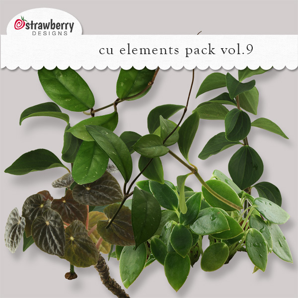 Leaves - Branches Element Mix Vol 9 by Strawberry Designs